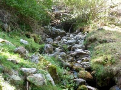 Tejera Navafria - Arroyo de los Tejos;excursiones de un dia gente senderista ruta cercedilla